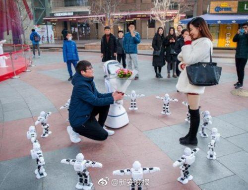 程序员携机器人求婚被拒 女友:去和机器人过日子